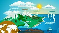 estados fisicos y ciclo del agua - YouTube