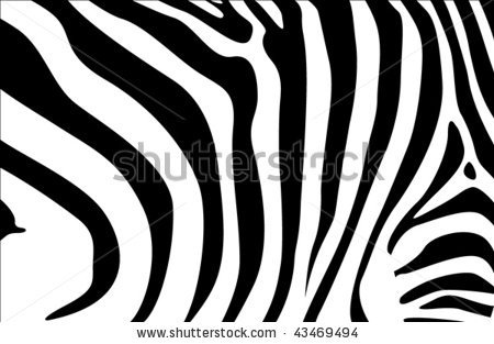 stock vector : zebra backround