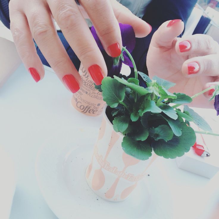 Red.. Manicur