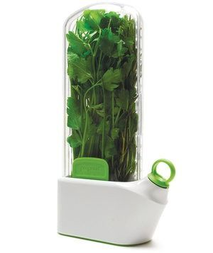 This slim container holds leftover herb stems upright in water, keeping them fresh and usable for up to three weeks.