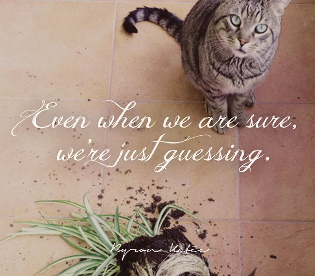 Even when we are sure, we're just guessing. - Byron Katie