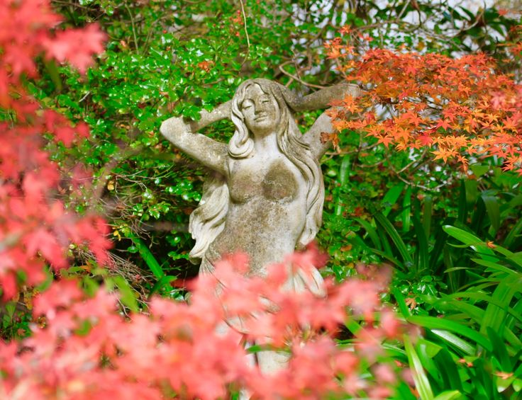 Enjoy the gardens at Lavender Majestic in Katoomba