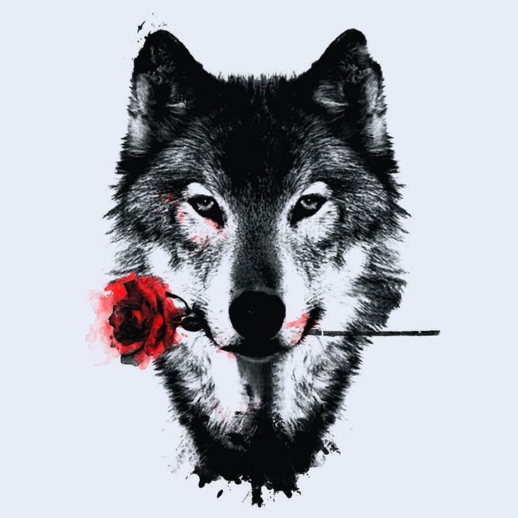 Wolf and rose - I would get this as a tattoo!