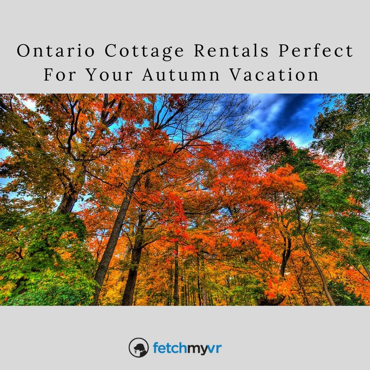 Ontario Cottage Rentals Perfect for your Autumn Vacation with family and friends. Come see the fall foliage in Canada, some of the best in North America.