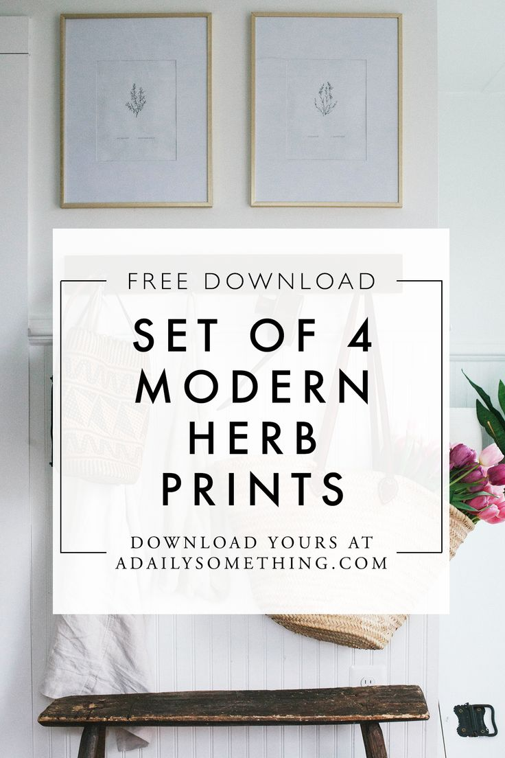 Free Modern Illustrated Herb Prints