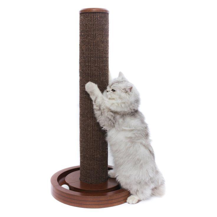 Best 25 Cat Scratching Post Ideas On Pinterest Diy Cat Scratching Post Scratching Post And