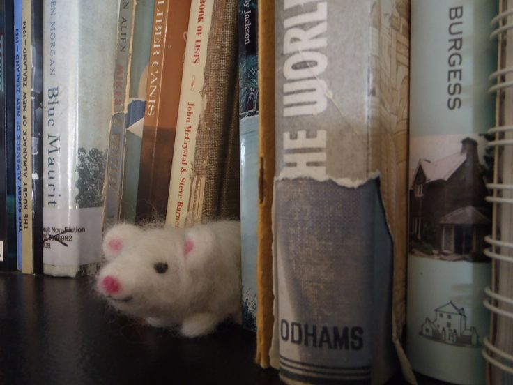Milly the mouse hiding in the book shelf. mbm (made by me)
