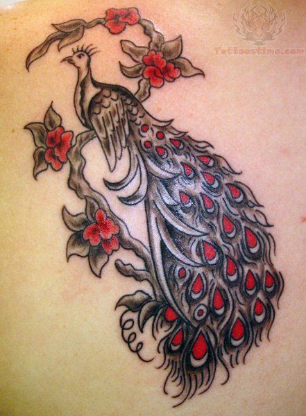 Grey And Red Ink Peacock Tattoo