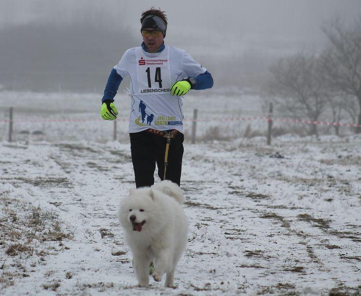 Wie ich zum #Barfußläufer wurde #Barfußlaufen | #Trail-Running | #Lauftechnik | #Laufschuhe Ein Beitrag von Jörg Schimitzek   Hallo! Mein Name ist Jörg Schimitzek. Ich bin leidenschaftlicher Trail-Läufer auf den langen Distanzen, abseits asphaltierter Strassen und dabei am liebsten im Team unterwegs, zusammen mit meinem Hund Nanuk. Ganzer Bericht s. bitte: http://www.laufinstinkt.de/#!blog/c1rpo