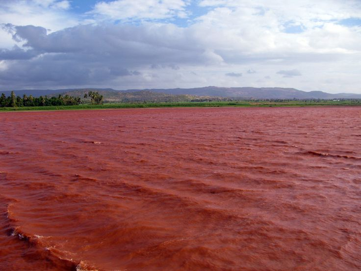 #MyWayOnHighway: Day 47, The Chilli-red Waters of Kamalapur Lake Hampi #travel
