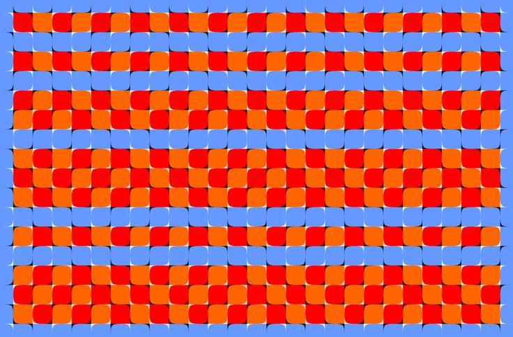 illusion by Akiyoshi Kitaoka: Motion Illusions, Optical Illusions, Optical Illusions D, Art, Works 44, ฺ Illusion ฺ, Bergen Illusion