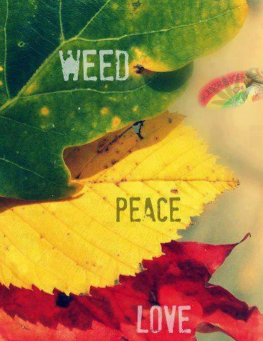 american hippie quotes weed 420 peace love peace love
