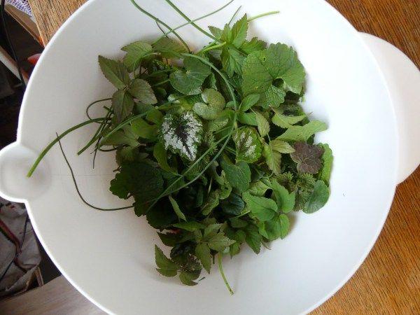 Wilde salade
