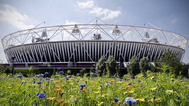 Wildflower meadows bloom at the Olympic Stadium