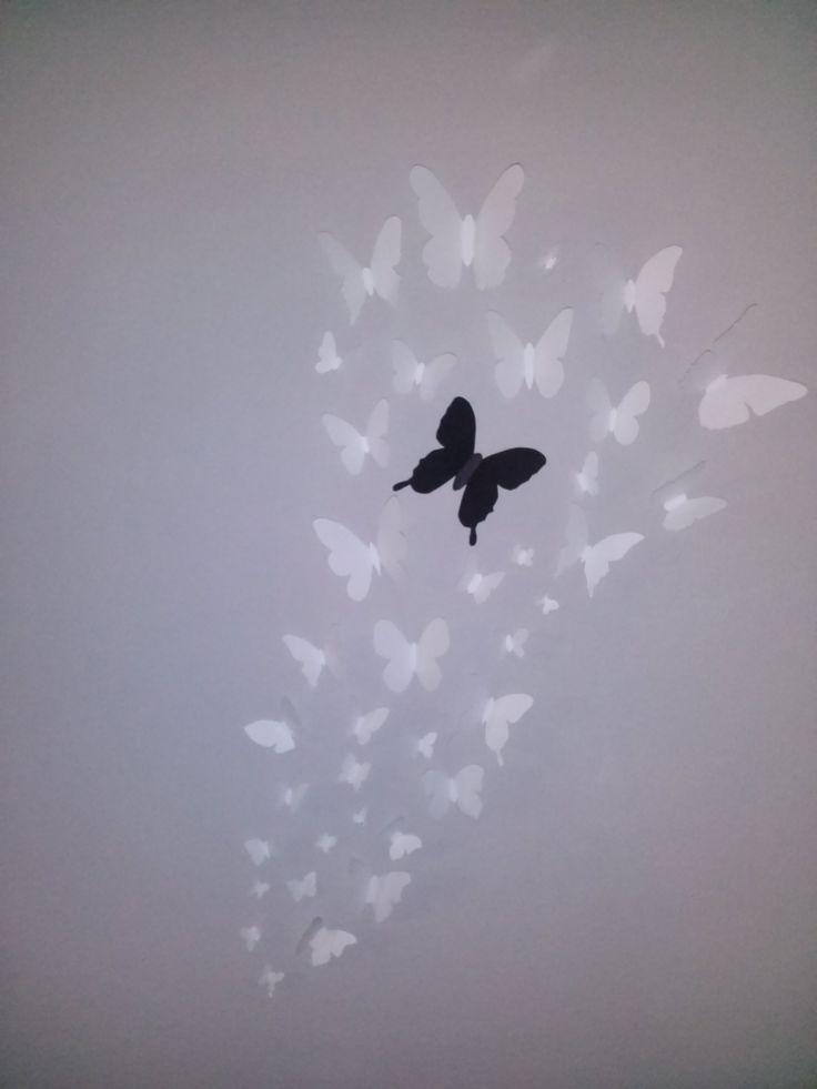 Farfalle di cartoncino attaccate al muro (decorazione da parete fatta in casa semplice e veloce) - easy wall decoration butterfly #butterfly #wall