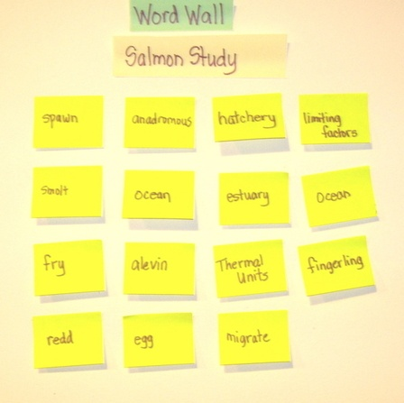 How to use word walls in upper grades.