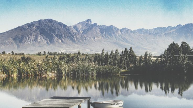 A photo I took this past December in Tulbagh, Western Cape, South Africa.