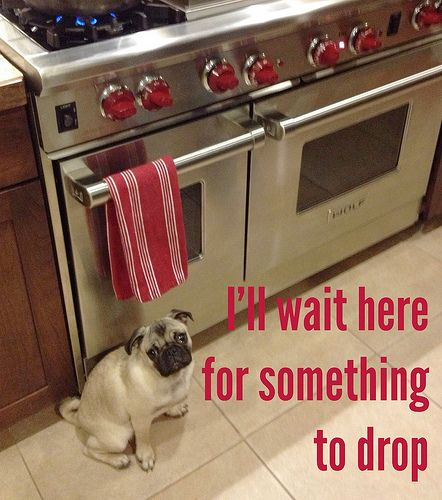 I never have drips on the floor from cooking anymore.