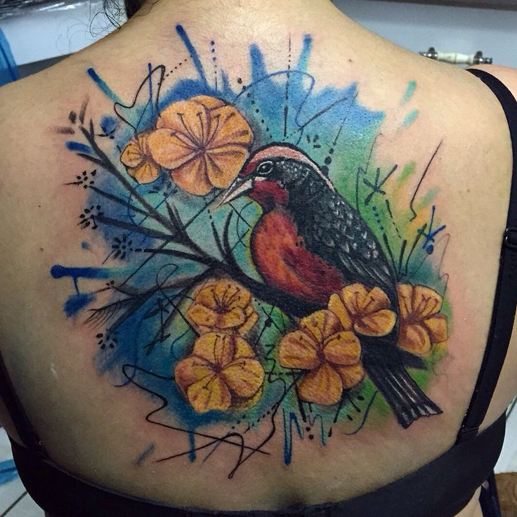 #bird #tattoo #loica #color #tatuaje #pájaro #freehand