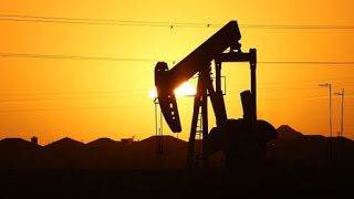 Four oil producing nations agree to freeze output