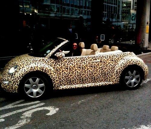 animal print car