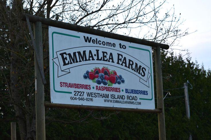 Emma-Lea Farms signage.