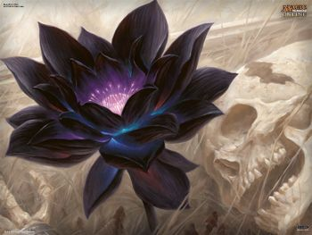 Black Lotus, love the color