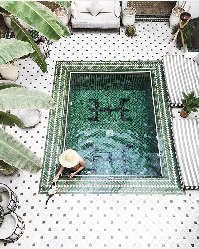Bowie & our guest @patrickpankalla by the pool 😻💦 Thanks for sharing this photo and for staying with us ! 🙏🏼 #leriadyasmine #marrakech #morocco #pool #tiles #ihavethisthingwithfloors #beautifulhotels #wanderlust #travel #traveling #cat