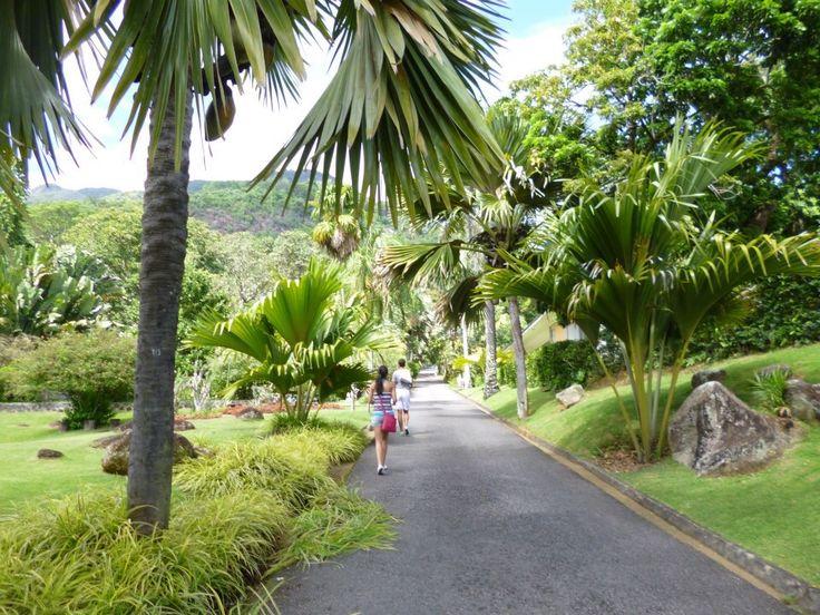 Seychelles !