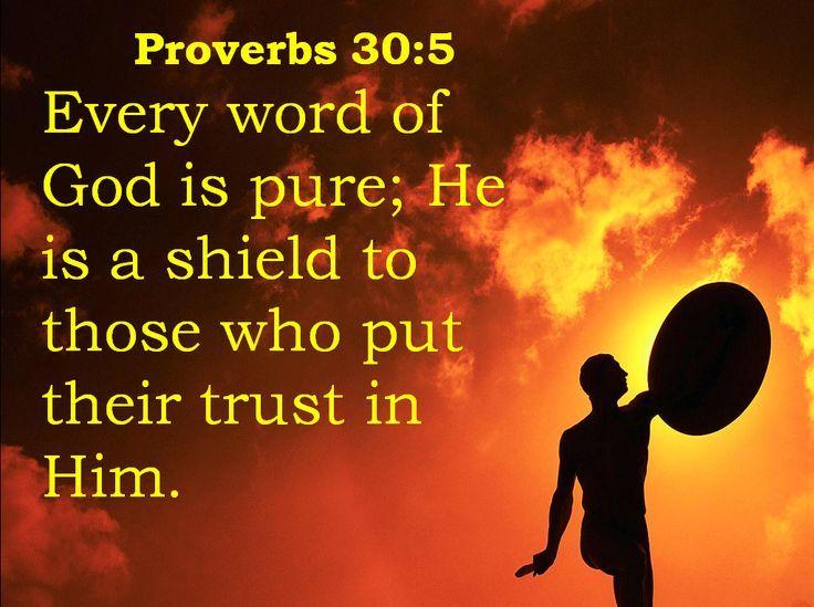 Proverbs 30 5