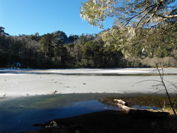 """EcoHike """"Natural Reserve El Cañi"""""""