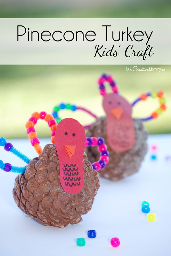 17 best images about pipe cleaners on pinterest fine for Pipe cleaner turkey craft