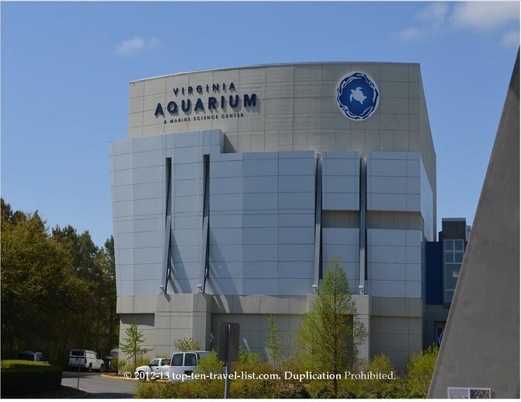 The Virginia Aquarium in Virginia Beach