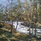Martin Llewellyn, Waterfall, Brecon Beacons