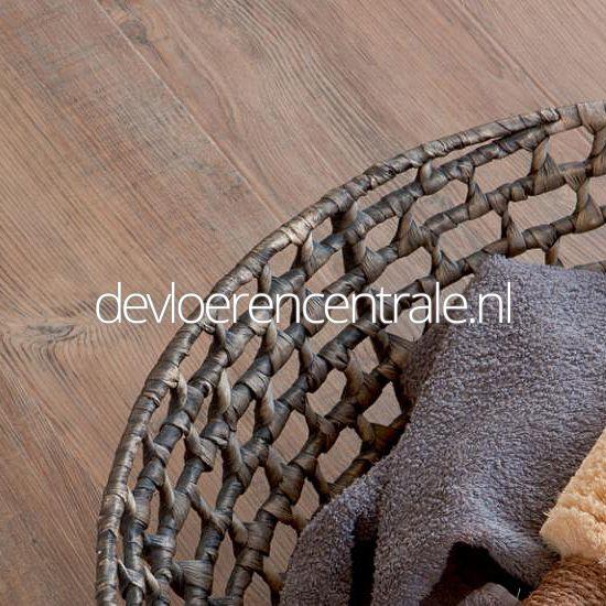 Moduleo PVC vloer Transform latin pine col 24874