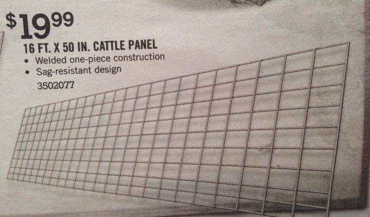 Inexpensive Trellis Use A Cattle Panel As A Trellis For