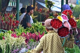 Rawa Belong, The bigest flower market in Jakarta, Indonesia