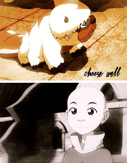 A sky bison is a companion for life, choose well. - Baby Appa!