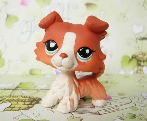 141 best Lps dogs images on Pinterest Lps dog, Littlest pet shops - best of coloring pages of littlest pet shop dogs