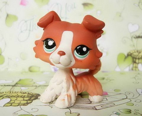 littlest pet shop Red Collie RARE!!!! need this tots do!!!