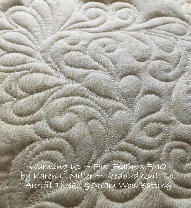 446 best Quilts: free motion images on Pinterest | Tips, Ceilings ... : machine free motion quilting - Adamdwight.com