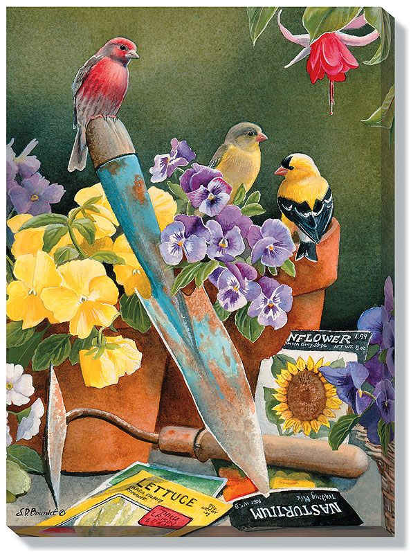 Susan Bourdet Garden Delights Finches Bird Art Birds