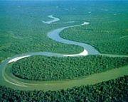 anse del Rio delle Amazzoni