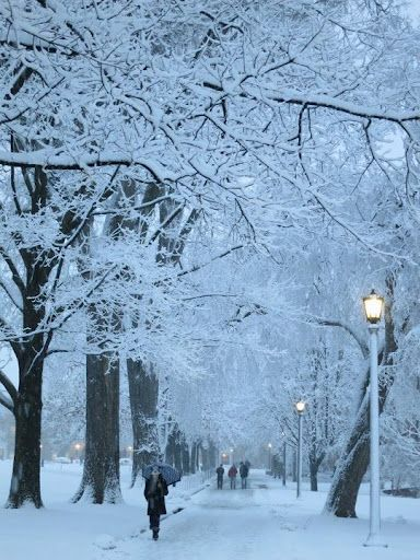 University of Wisconsin, Madison campus, a perfect place for a romantic walk