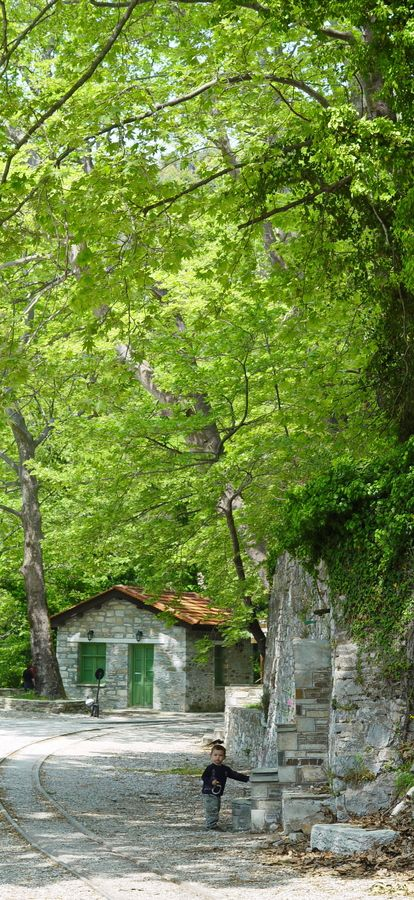 Pelion mountain, #Greece, #nature