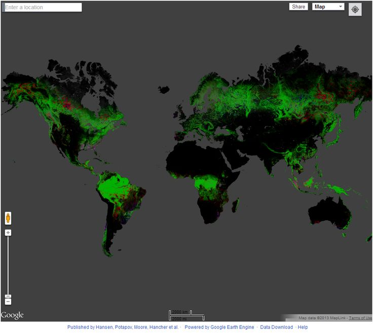 The 172 best custom google maps images on pinterest cards custom interactive world map global forest change gumiabroncs Choice Image