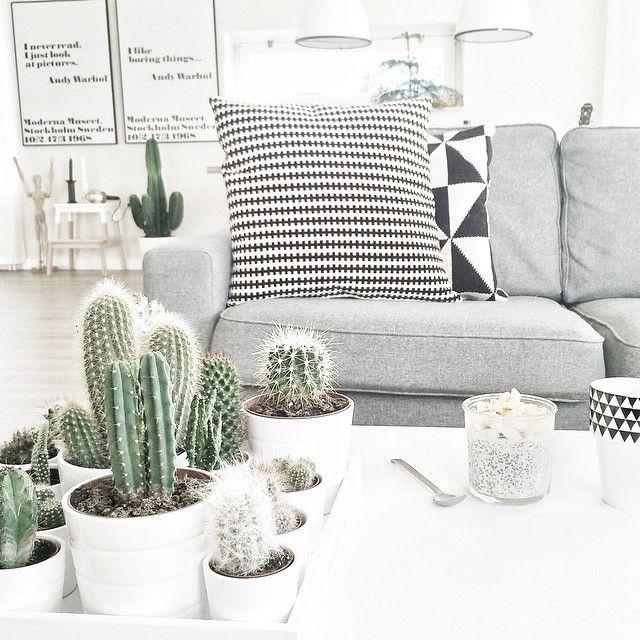 Check www.littledeer.nl voor mooie, vintage woonaccessoires. #Inspiratie #Cactus #Planten