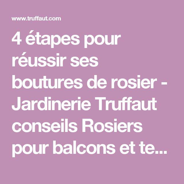 4 étapes pour réussir ses boutures de rosier - Jardinerie Truffaut conseils Rosiers pour balcons et terrasses Truffaut