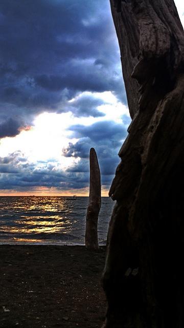 Di pantai aku, kayu hanyut yang menunggu: | tanpa tangan melambai angin ke dalam teluk, |matahari merangkak naik dan tergelincir pada setegak tubuh | waktu mengguratku. | pada kematian, kekasih | pada lenganmu, sempurna rindu akan berpeluk |