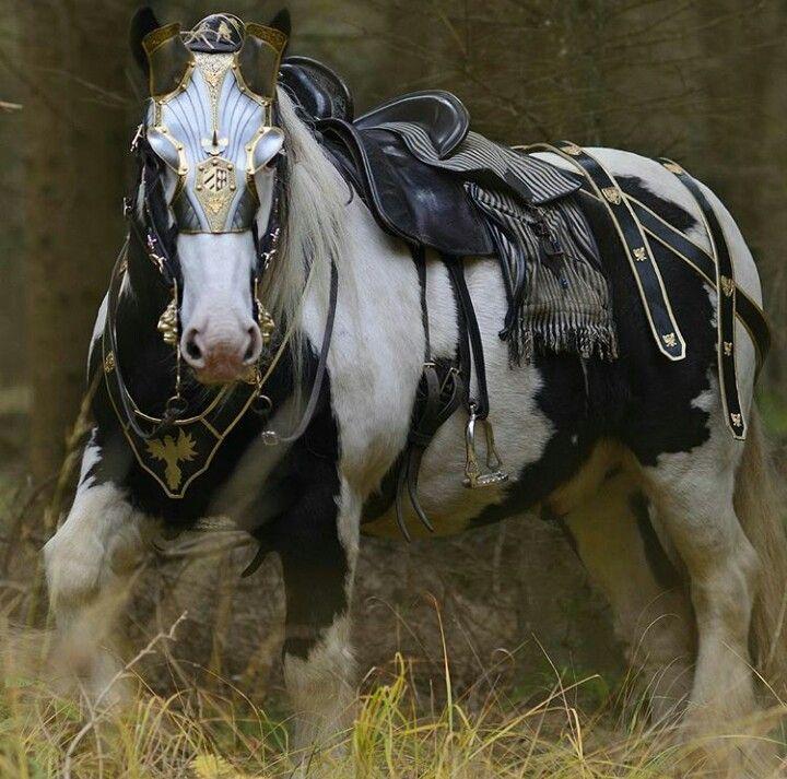 Beatiful Houses Fair 5394 Best Beautiful Horses Images On Pinterest  Horses Beautiful Inspiration
